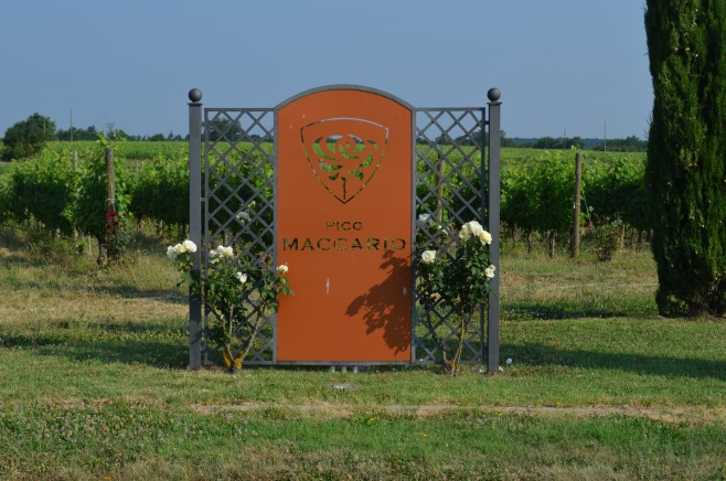 Logo in wijngaarden Pico Maccario